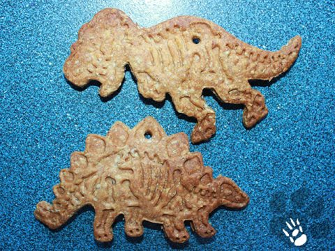 t-rex + stegosaurus