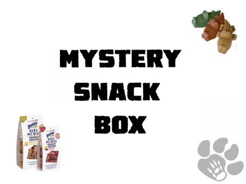 mystery snack box